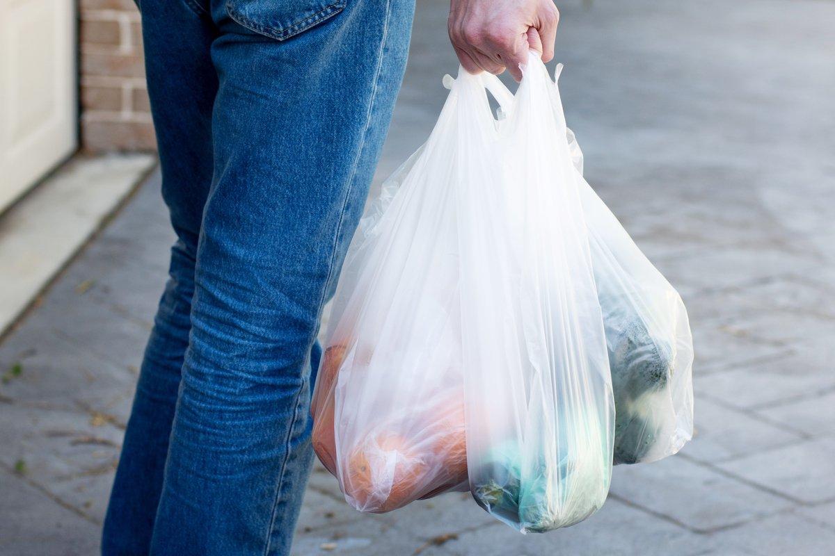ゴミ袋派が教える。レジ袋有料化で売れている「実は高コスパ」なレジ袋5選