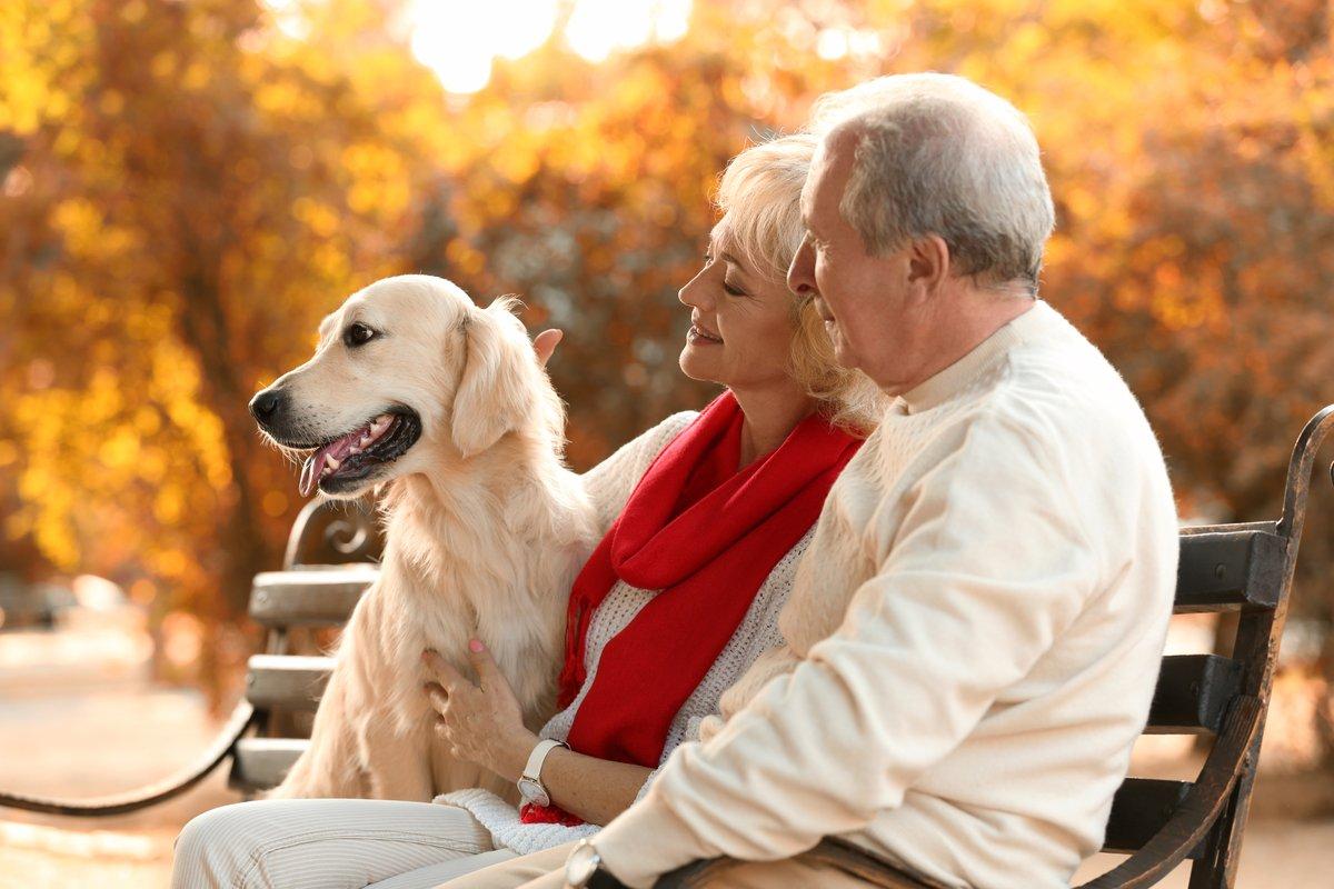 年金・貯蓄から見る、「70代の暮らし」とは?