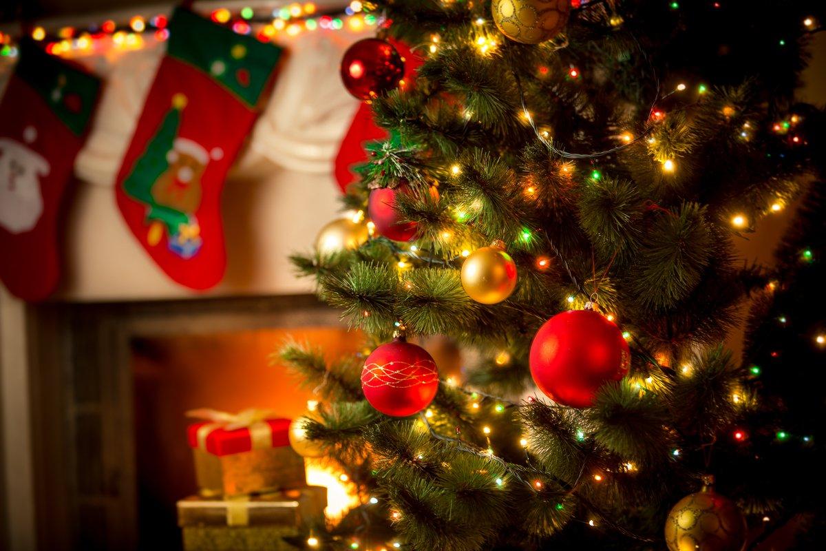 【麻羽たんぽぽの12月12星座占い】金運をよくするために、今「やること」「やめること」