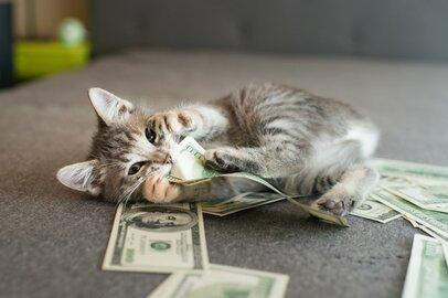 元信金マンがみた!お金が貯まる人の3つの特徴