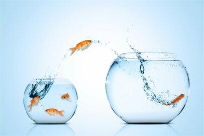 転職はビジネスパーソンとしてのステップアップ?「転職」についての情報をまとめてみました