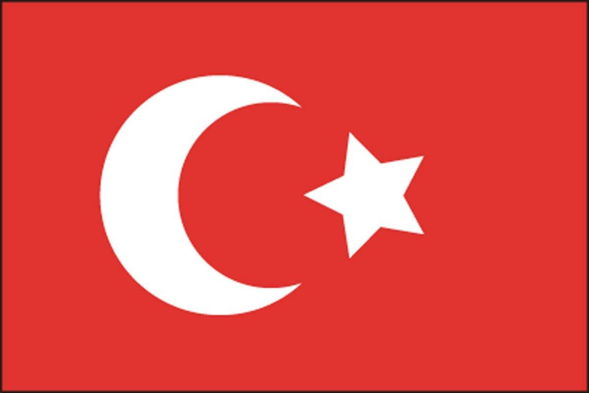 このトルコの国旗、どこが「まちがい」かわかりますか?(難易度★★★☆☆)