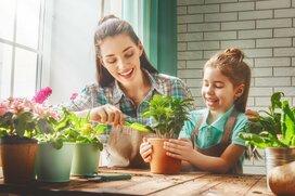 おうちに花を…簡単!「おうち&ベランダ栽培できる植物」8選
