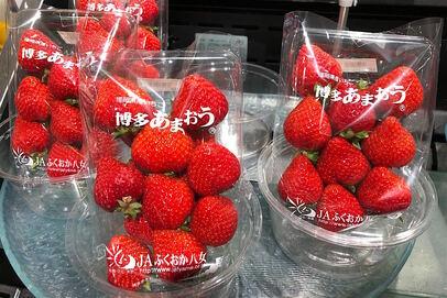 日本のイチゴ消費量はどのくらい減ったのか