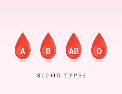 【血液型別】仕事や人間関係で活かせる!4タイプの特徴とは?