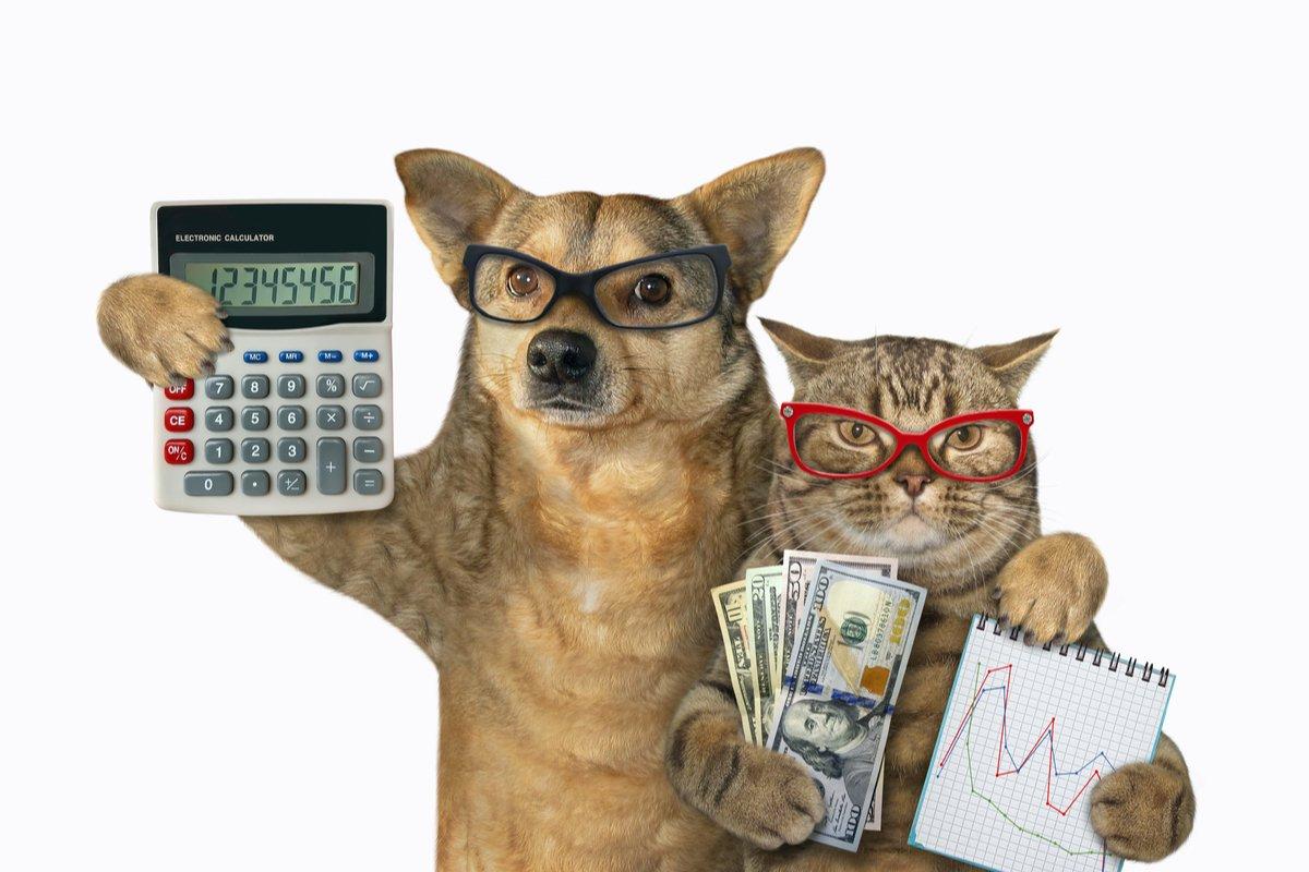 【世帯年収600万vs1000万円】貯蓄や負債、女性の有業率は?