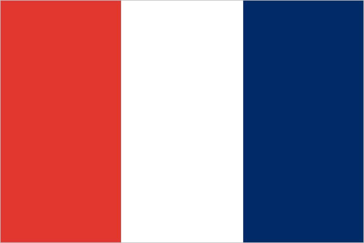 このフランス国旗、まちがいはどこでしょう?(難易度★★★)