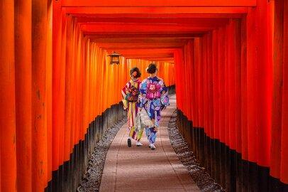 京都大学・理学研究科(修士)の学生が就職する上位企業ランキング