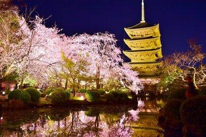 京都大学・総合人間部の学生が就職する上位企業ランキング