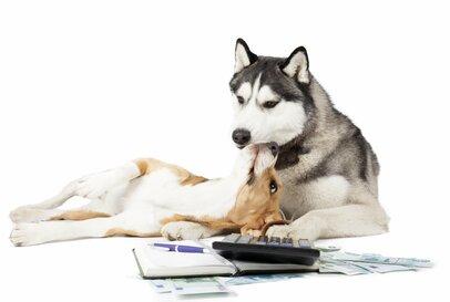 """「家計簿上手は貯め上手」""""コロナ出費""""が増える今、お金の流れをつかんで家計を改善しよう!"""