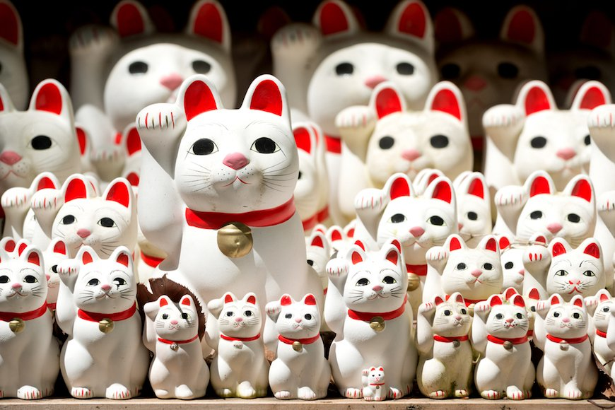 猫の存在感が増している!?  2兆円超の経済効果という「福」を招く