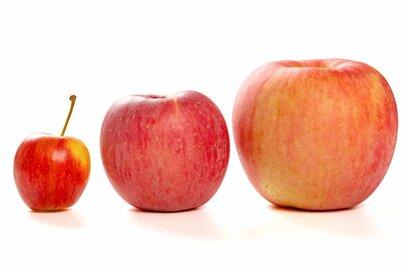 退職金事情「大企業と中小企業」でどれほど差があるか