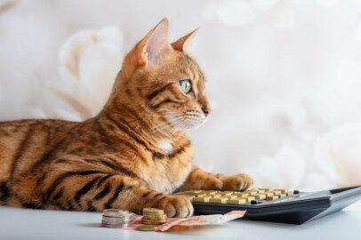 国民年金・厚生年金、リアルな「毎月の受給額」はいくら?