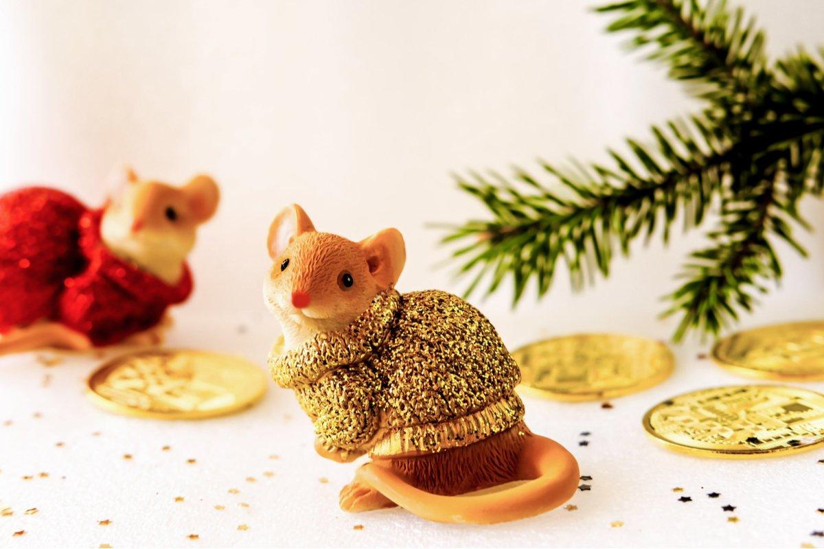【佐久間三絵子の金運・開運占い】イベントシーズン到来!気になるあなたの12月の金運は?