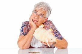 お金がない老後は避けたい!これならできる家計の見直し術