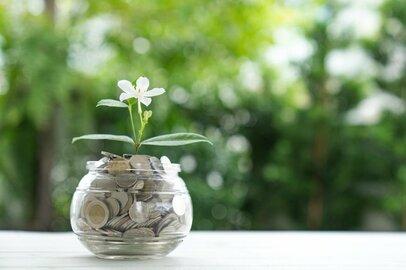 低金利時代の貯蓄を考える〜初心者が知っておきたい投資信託の種類や傾向