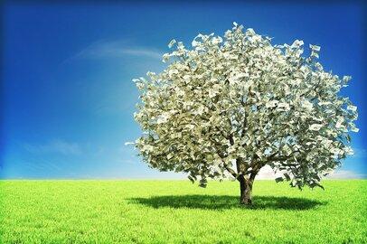 貯金800万円、年収350万円でも貯められた!「貯まる人」は何が上手なのか?
