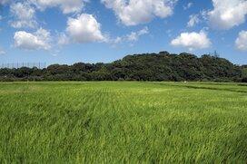 【平均貯蓄1800万】東京や神奈川ではない意外な「おいしい」県がお金持ち