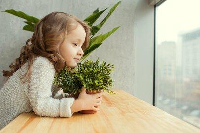 「エコライフ」ってどんな生活のこと?節約できて環境にも優しい、簡単アイデア4選