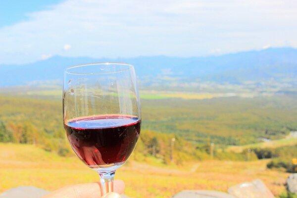 「日本ワイン」人気が上昇中。「国産ワイン」との違いは何?