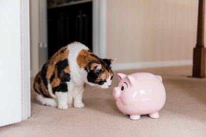 還暦60歳「一人ぐらしの老後のお金」いくら必要か