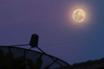シャープとサムスンの昔のガジェットを見ながら秋の夜長に考えたこと