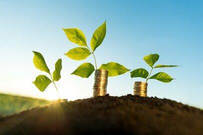 投資信託への第一歩、インデックス投資とアクティブ投資はどう違う?