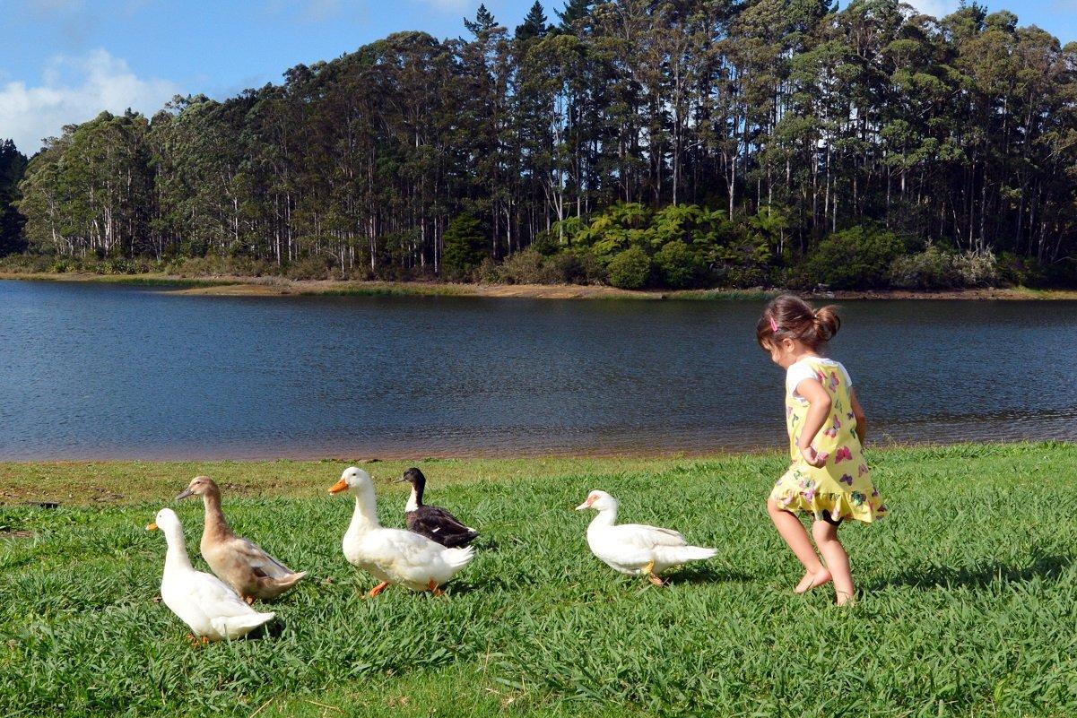「18〜19時に就寝」「体罰禁止」「シェアしなさい!」…ニュージーランドの子育てのフツーとは?