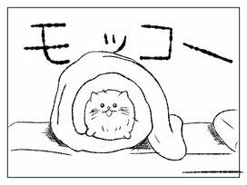 実はナルシスト!? モコモコ過ぎる猫「モコ」の、おうちでの過ごし方を見てみよう