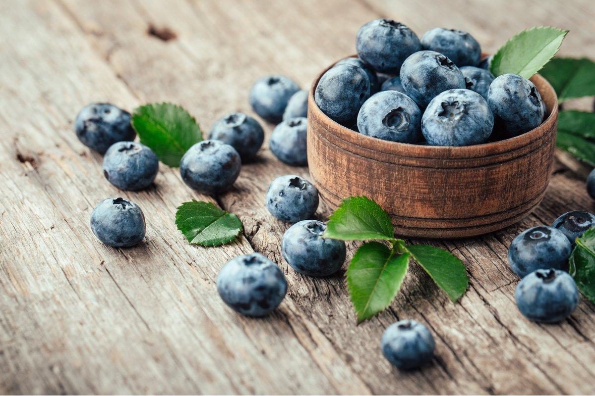 鉢植えで育つブルーベリー!おすすめ品種で収穫量アップ、選び方のポイント