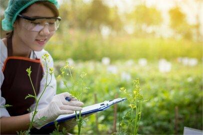 自然科学系研究者の給料はどのくらいか