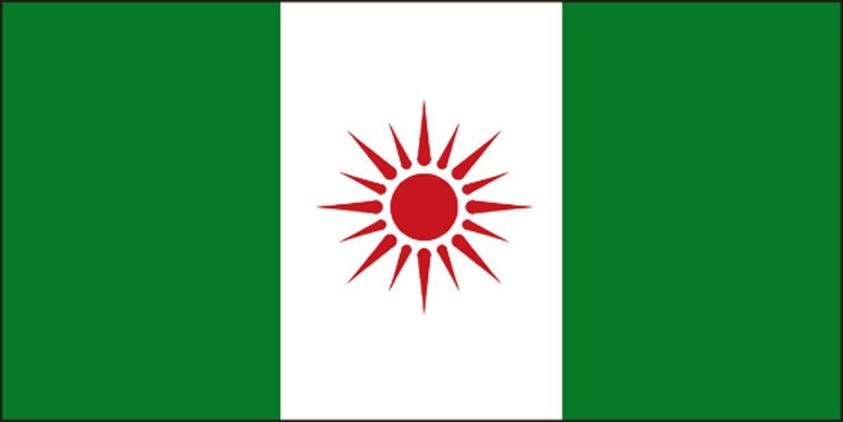 このナイジェリアの国旗、どこが「まちがい」かわかりますか?(難易度★★☆☆☆)