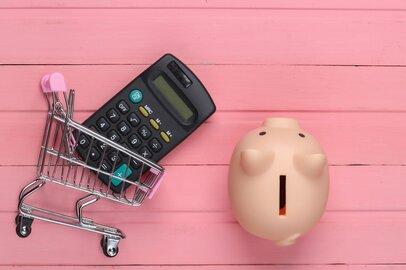 節約上手さんになるための「家計簿活用術」&「買い物の工夫」