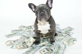 元銀行員が語る、お金を増やすのがうまい人の4つの特徴