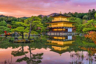 京都大学・法学部の学生が就職する上位企業ランキング