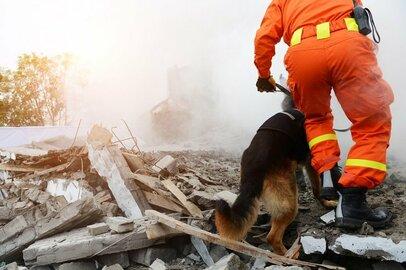 子どもの命を守るために。大地震に備えていますか?