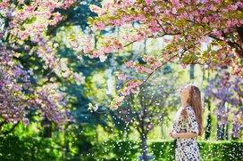 【2020年3月の金運・仕事運】春を呼ぶ開運法(麻羽たんぽぽの12星座月間占い)