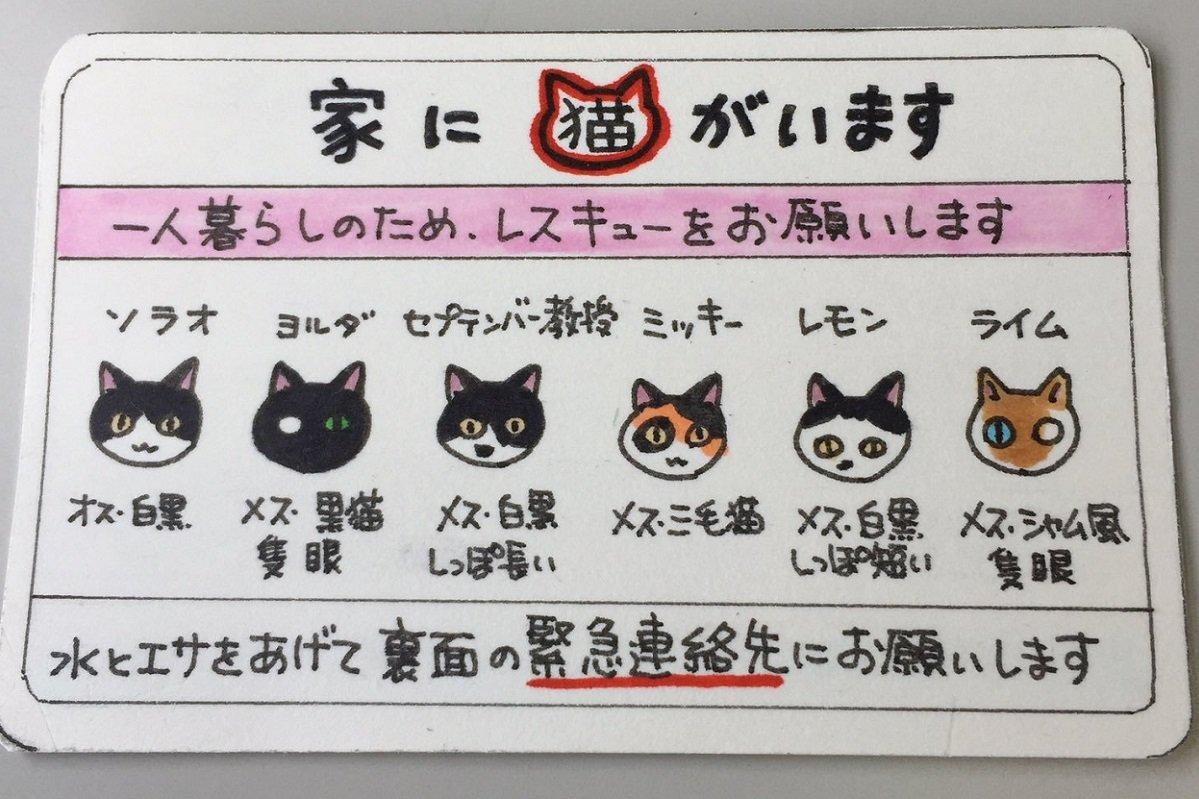 猫マンガ家も携帯する「レスキューカード」 あなたも考えてみませんか?