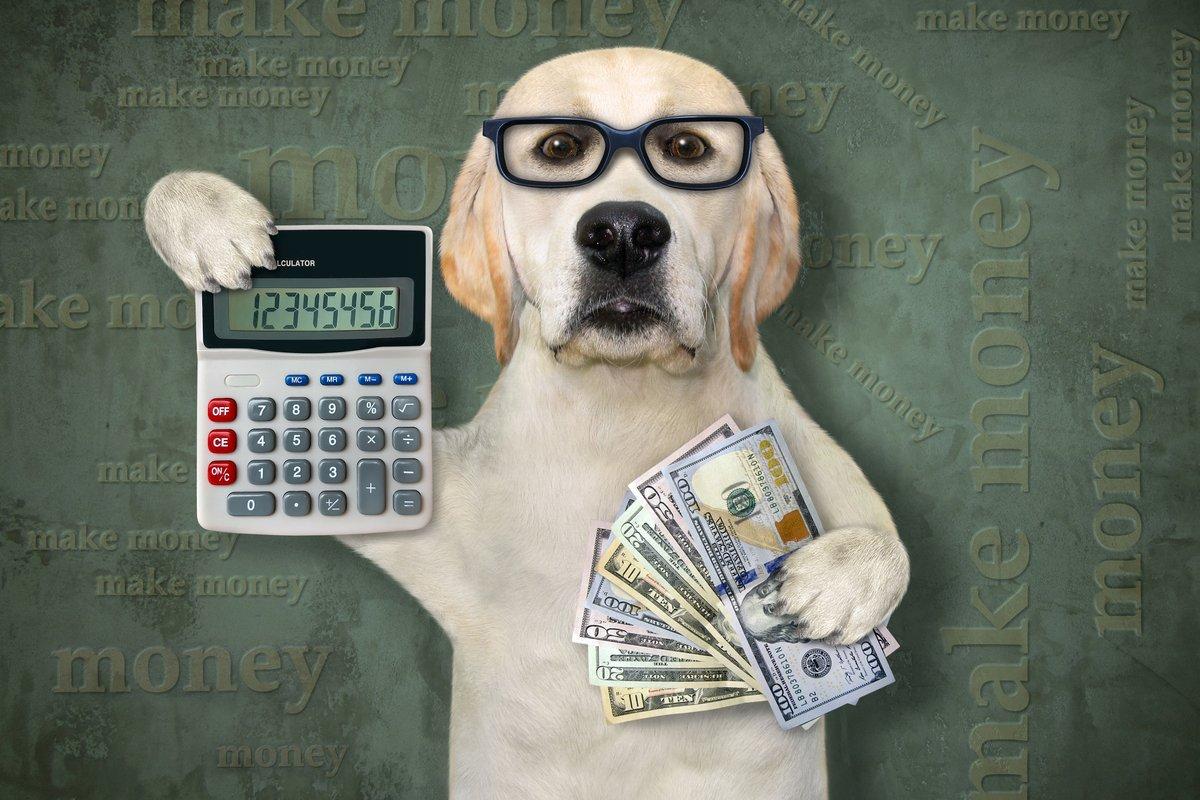50代で「既に貯蓄2000万円超」の世帯は何割か