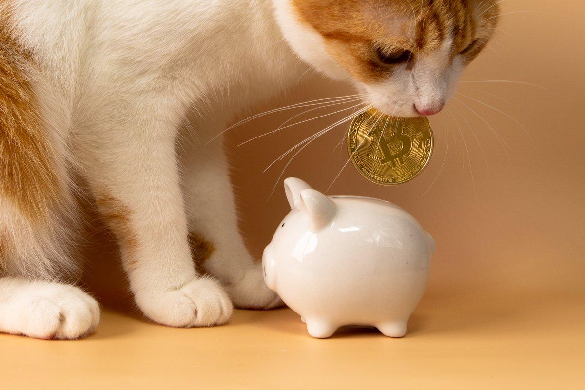 厚生年金「受け取り金額の平均」男女差は約6万円