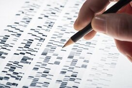 最大規模7609人の日本人全ゲノム配列を公開